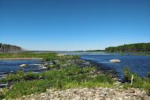 Puurijarvi-Isosuo National Park, Huittinen, Finland