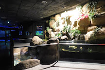 Roquetas de Mar Aquarium, Roquetas de Mar, Spain