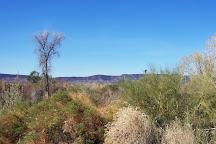 Mittry Lake Wildlife Area, Yuma, United States