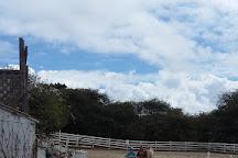 Ricochet Ridge Ranch, Fort Bragg, United States