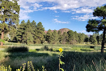 Picture Canyon Natural and Cultural Preserve, Flagstaff, United States
