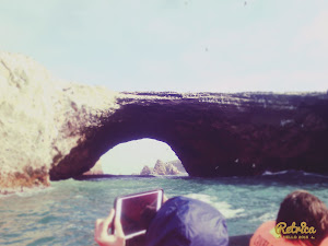 Paracas Beach Travel 8