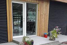 Brunir Horse, Akureyri, Iceland