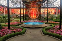 Cosmovitral Jardin Botanico, Toluca, Mexico