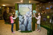 Ecomuseum of the Seasonal Lakes of Pivka, Pivka, Slovenia