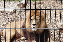 Port Lympne Wild Animal Park, Lympne, United Kingdom