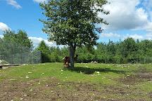 Zoo de Falardeau, Saint-David-de-Falardeau, Canada