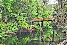 Hillsborough River State Park, Thonotosassa, United States
