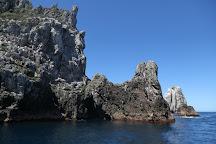 Poor Knights Island Marine Reserve, Whangarei, New Zealand