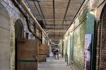 Alcatraz Tours, San Francisco, United States