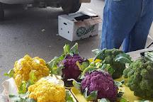 Memphis Farmers Market, Memphis, United States