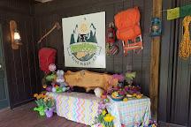 Expedition:BIGFOOT!, Cherry Log, United States