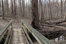 Cabin John Regional Park, Bethesda, United States