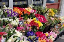 Rotary's Camberwell Sunday Market, Camberwell, Australia