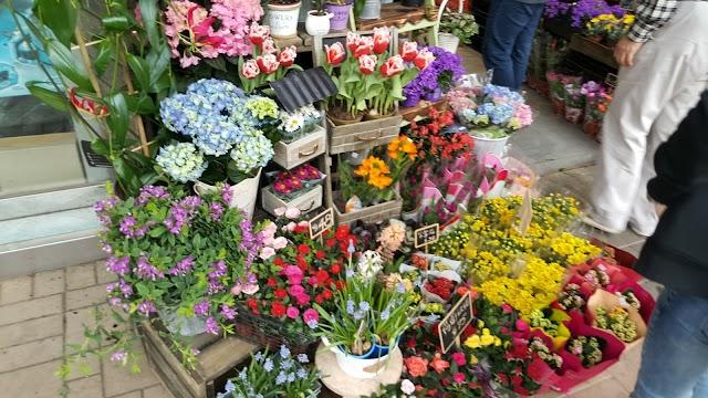 Yeun Po Street Bird and Flower Market