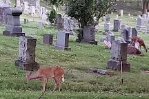 Mound Cemetery, Marietta, United States