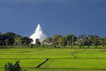CMS Tours, Colombo, Sri Lanka