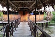 Area de Conservacion Regional Comunal Tamshiyacu Tahuayo, Iquitos, Peru