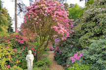 Rhododendronpark Hobbie, Westerstede, Germany