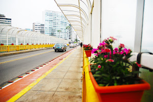 Alquiler de Departamentos en Lima 9