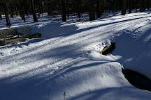 Wolfeboro Cross Country Ski Association, Wolfeboro, United States