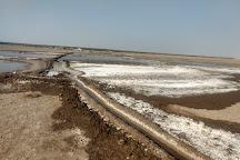 Little Rann of Kutch, Gujarat, India