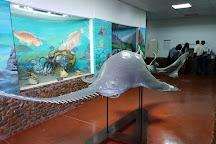 Museu De Historia Natural de Maputo, Maputo, Mozambique