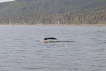 Alaska Tales, Juneau, United States
