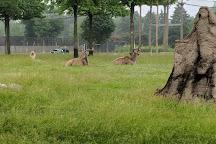 Toledo Zoo, Toledo, United States