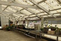 Heidrun Meadery, Point Reyes Station, United States