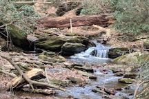 Tucquan Glen Nature Preserve, Holtwood, United States