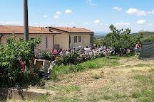 Casa Natale Di Fausto Coppi, Castellania, Italy