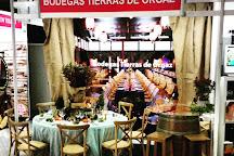 Bodegas Tierras de Orgaz, Manzaneque, Spain