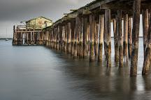 Pillar Point Harbor, Half Moon Bay, United States