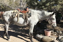 Cieneguilla Stables, Taos County, United States