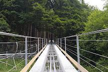 Chiemgau Coaster, Ruhpolding, Germany