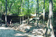 Peachtree Rock Heritage Preserve, Lexington, United States