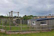 Heads of Ayr Farm Park, Ayr, United Kingdom