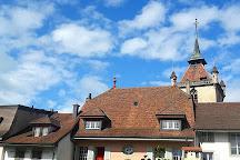 Musee des Grenouilles, Estavayer-le-Lac, Switzerland