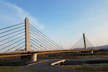 Twin Harp Bridge, Asahikawa, Japan