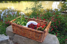 Cooking by The Canal du Midi, Trebes, France