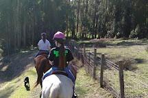 Horse N Around Trail Rides, Bodega Bay, United States
