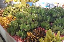Siri Wattana Market / Thanin Market, Chiang Mai, Thailand