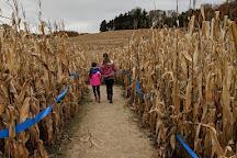 Jacob's Corn Maze, Traverse City, United States