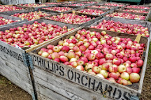 Phillips Orchards & Cider Mill, Saint Johns, United States