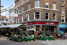 Shambles Market, York, United Kingdom