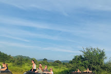 Nature Paradise Tours, Kandy, Sri Lanka