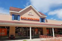 North Georgia Premium Outlets, Dawsonville, United States