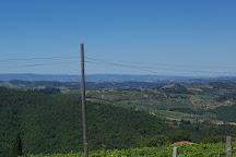 Lamole Di Lamole, Greve in Chianti, Italy