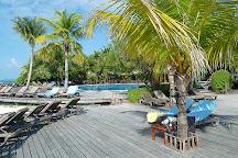 Prodivers Maldives, Kuredu, Maldives